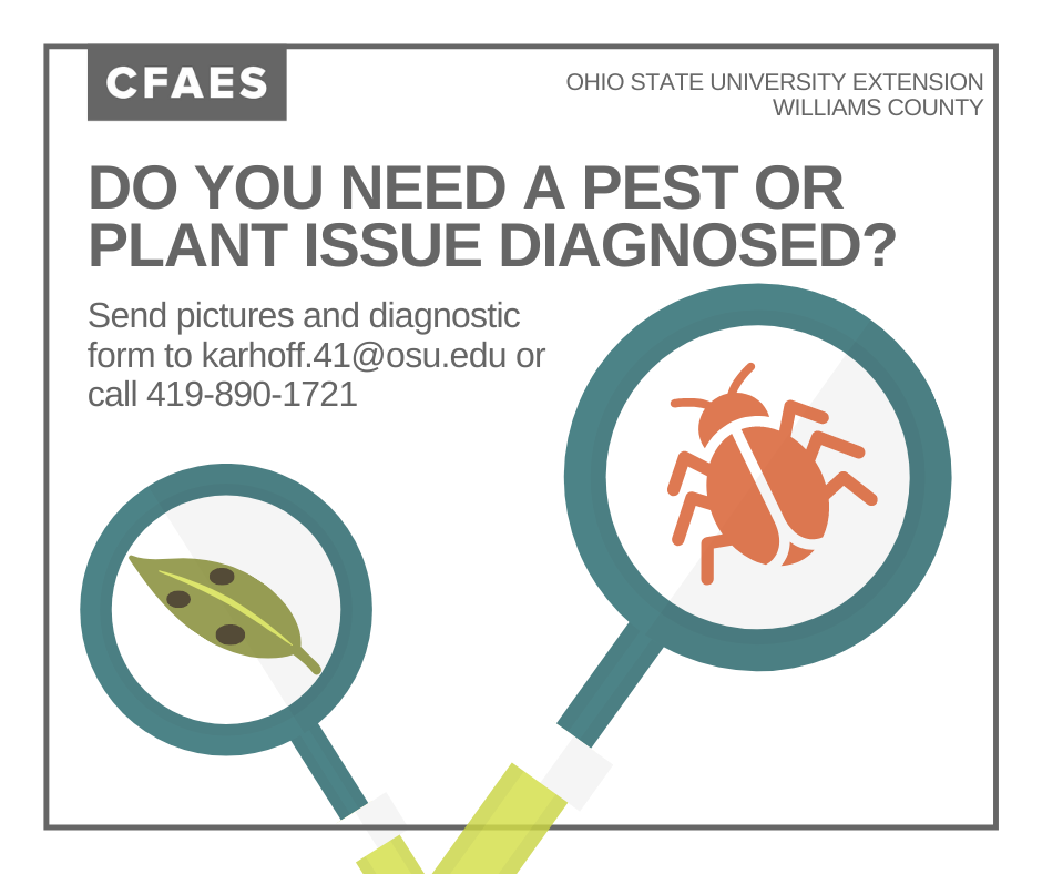 Plant and Pest ID